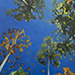 A View from the Hammock - Painting by Patricia Fabian